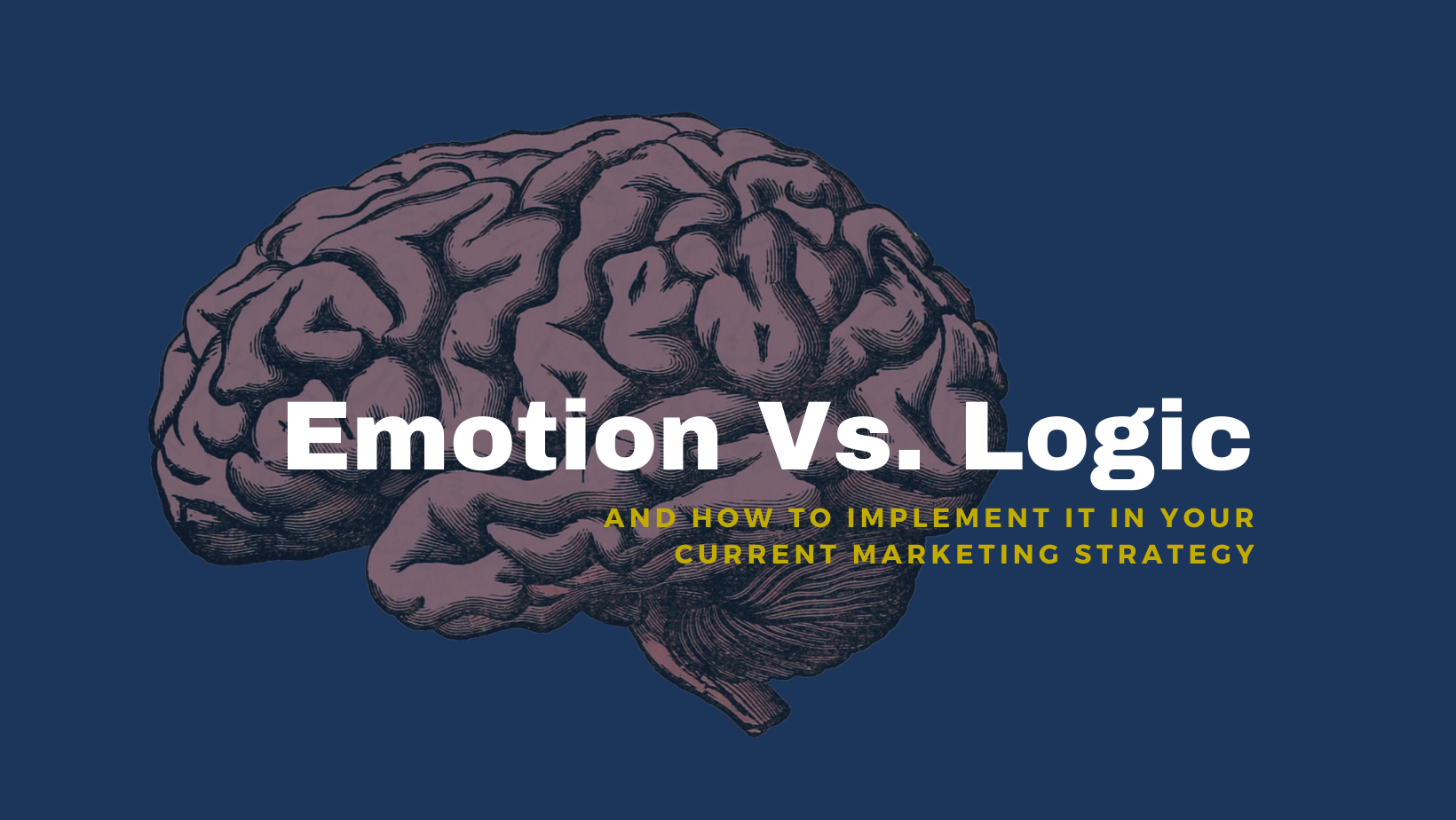 Appeal to emotion or logic with your marketing